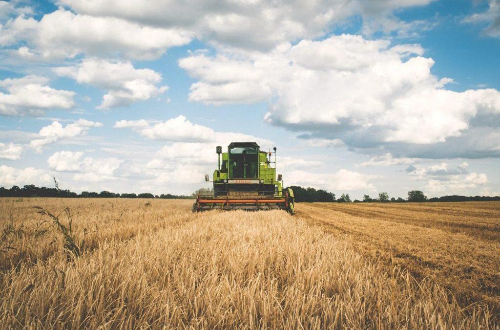Für ein Umdenken in der Agrarpolitik